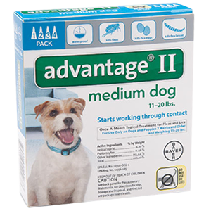 bayer advantage spot on flea drops for medium dogs