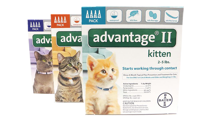 advantage 2 for cats box