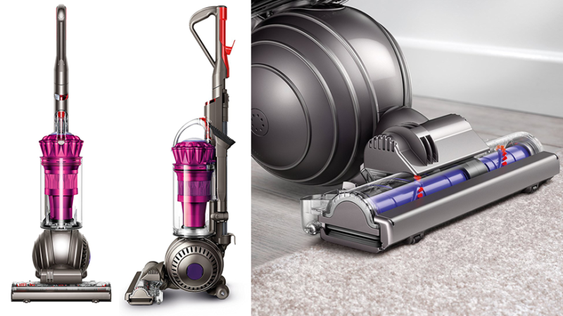 Best Vacuums for Flea Control