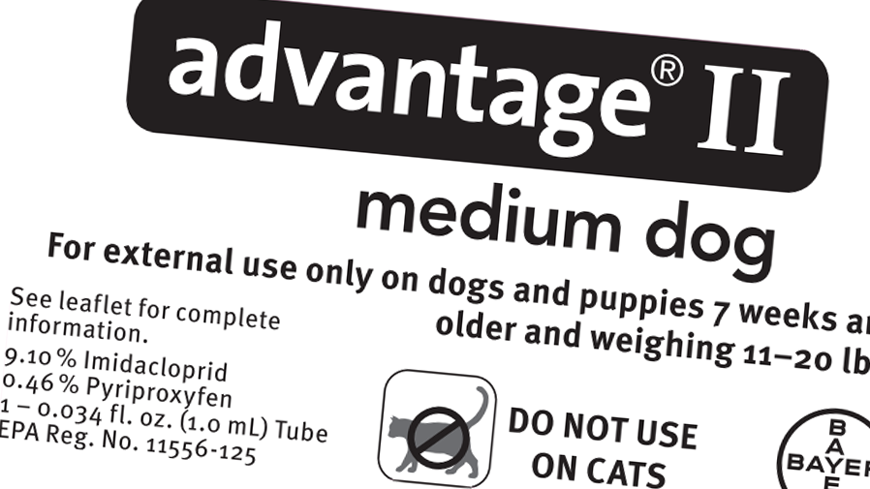 Advantage Ii Dosage For Small Dogs