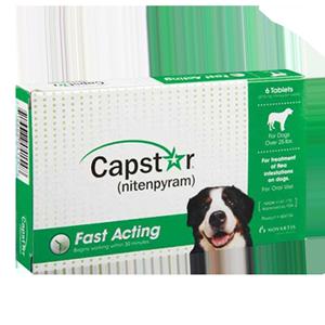 Oral Flea Medication For Dogs Fleascience