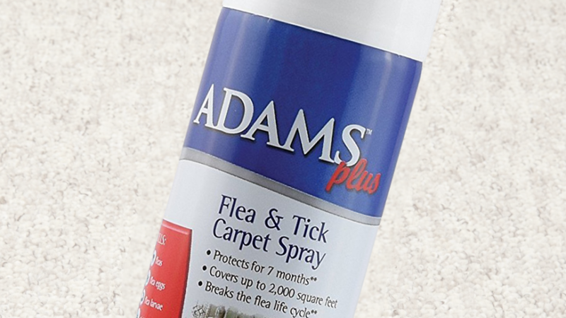 Zodiac Fleatrol Carpet Amp Upholstery Aerosol Spray Review