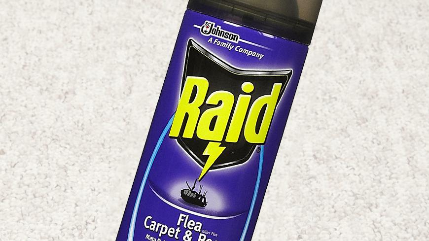 Raid Flea Killer Plus Carpet & Room Spray Review